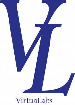 VL Logo and text